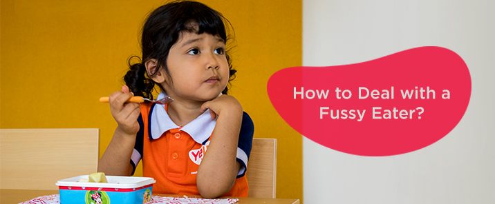 How to Deal with a Fussy Eater-blog